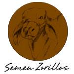 Semen-Zorillos